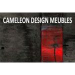 Caméléon Design