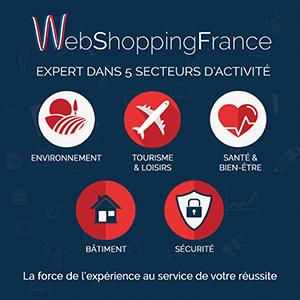 webshoppingfrance-secteurs.jpg