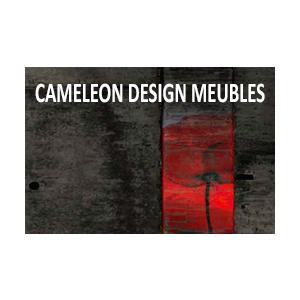 CV-cameleon.png